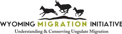 Migration Initiative logo